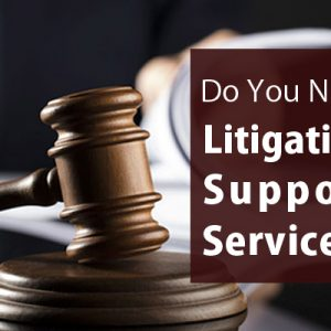 What are litigation services?