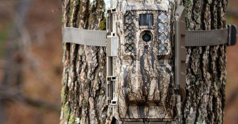 Types of Trail Camera