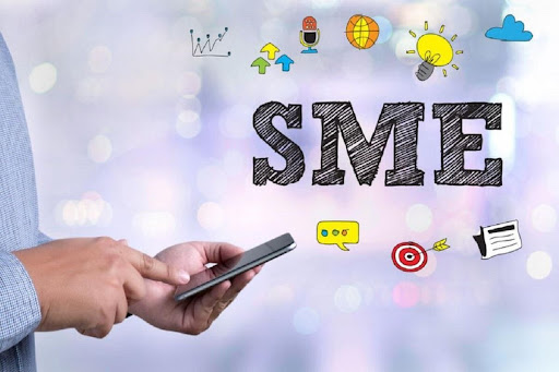 What are the Important steps taken by the UAE for SMEs?